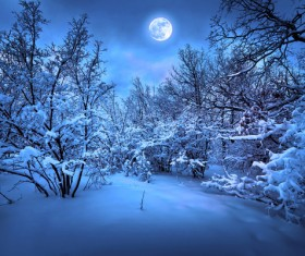 Beautiful snow scene with bright moon Stock Photo