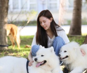 Beauty girl and Samoyed dog Stock Photo