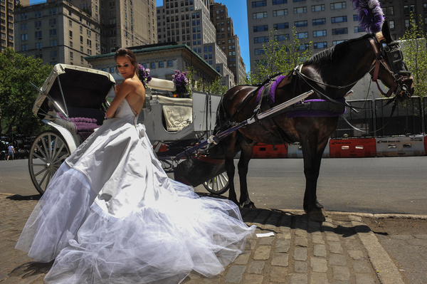 Bride standing by the carriage Stock Photo