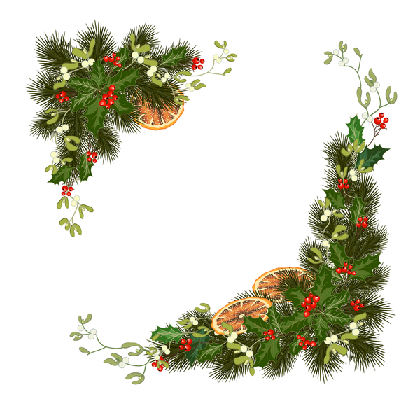 Christmas pine branches with holly ornaments vector illustration 07