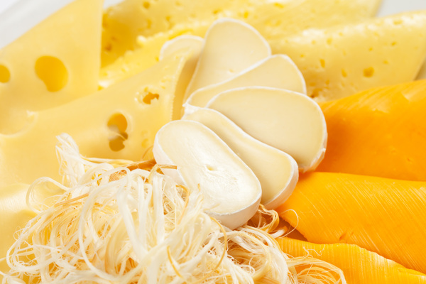 Different types of cheese dairy products Stock Photo 05