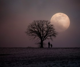 Father and daughter standing under the tree at night Stock Photo