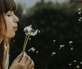 Girl blowing dandelion flowers Stock Photo