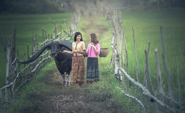 Grazing young girl Stock Photo 01