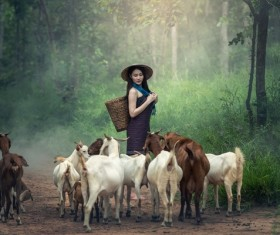 Grazing young girl Stock Photo 04