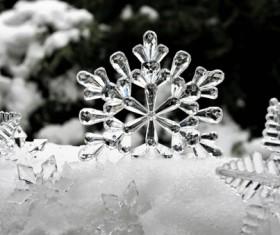 Ice flower macro on the snow Stock Photo