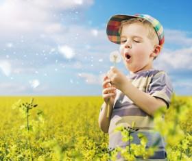 Little boy blowing dandelion flower Stock Photo