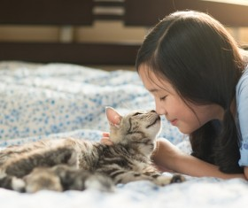 Little girl and cat close interaction Stock Photo