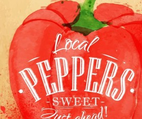 Peppers watercolor drawing vector