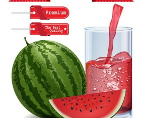 Red tag with watermelon juice vector