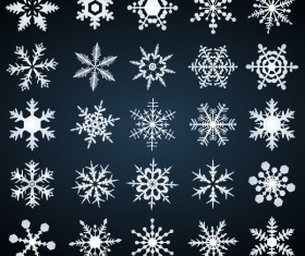 Set of christmas snowflake illustration vector 07