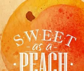 Sweet peach watercolor drawing vector