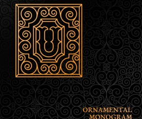 Vintage ornaments pattern luxury design vector 10