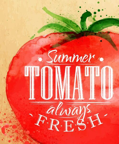 Watercolor drawn tomato vector