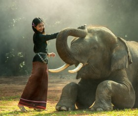 Young girl and elephant Stock Photo