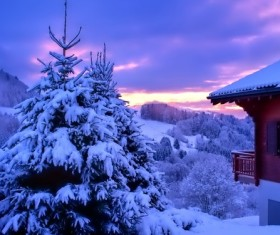 pure white snow Stock Photo 02