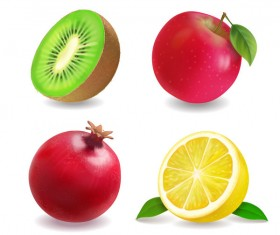 4 kind fruits illustration vector