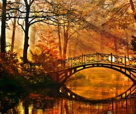 Autumn woods and across the river bridge Stock Photo
