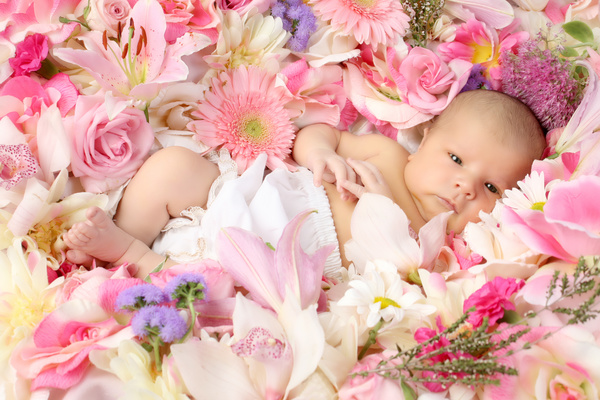 Baby lying in flowers Stock Photo 01