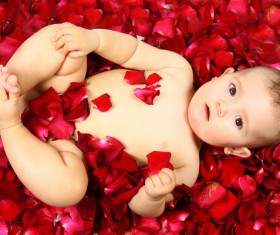 Baby lying in flowers Stock Photo 03