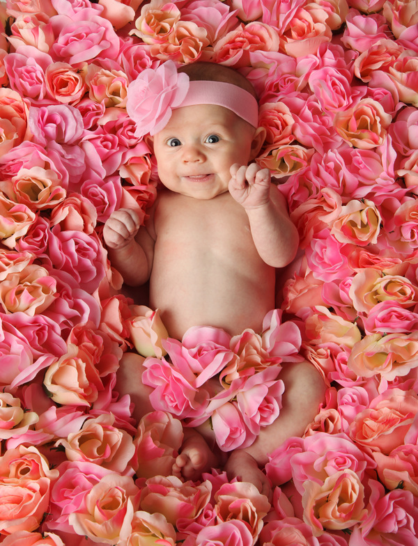 Baby lying in flowers Stock Photo 04