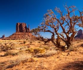 Beautiful Grand Canyon National Park landscape Stock Photo 10