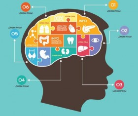 Brain infographic template vector 01
