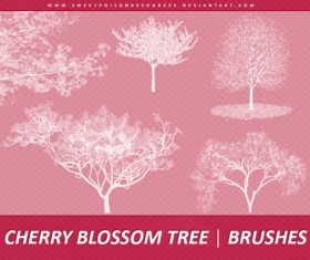 Cherry Blossom Tree Photoshop Brushes