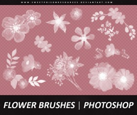 Different Flower Photoshop Brushes
