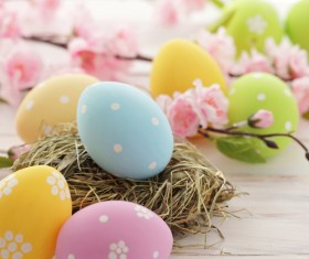 Easter eggs and flowers on the desktop Stock Photo 02