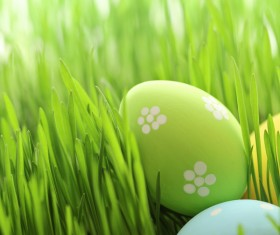 Easter eggs in the grass Stock Photo
