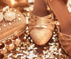 Fashion luxury ladies accessories and shoes Stock Photo 03
