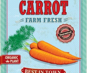Fresh carrot poster vector