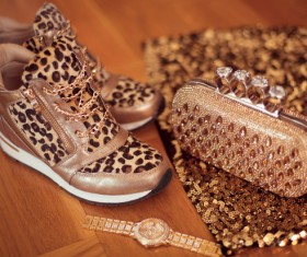 Gemstone Golden ladies handbag and watch and trendy shoes Stock Photo 01