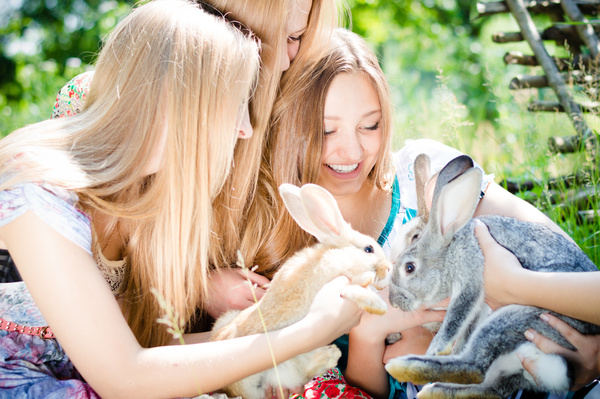 Happy girls and bunnies Stock Photo