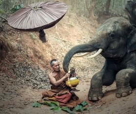 Monks and elephants Stock Photo