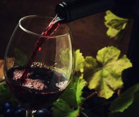 Red Wine Stock Photo 03