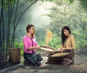 Screen rice woman Stock Photo 02