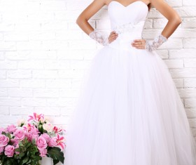 Wear Wedding dress beautiful bride Stock Photo 05