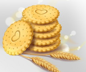 Wheat crackers illustration vector