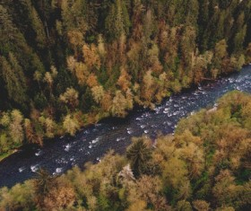 Wild fores and stream from high view Stock Photo