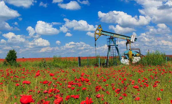 Wildflowers and Beam pumping unit on meadow Stock Photo