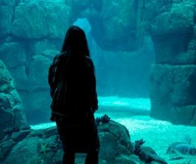 Woman visiting aquarium Stock Photo