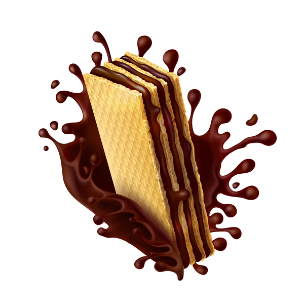 chocolate wafer biscuits vector