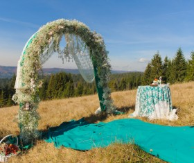 All kinds of beautiful wedding arch Stock Photo 07