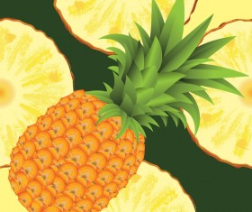 Ananas with pineapple slices vector