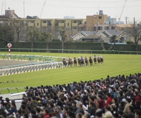 Asia intense horse racing Stock Photo