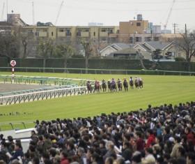 Asia intense horse racing Stock Photo