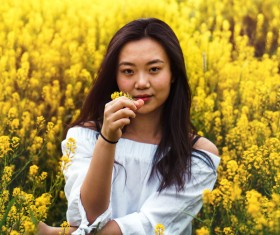 Asian girl sitting in yellow flowers Stock Photo