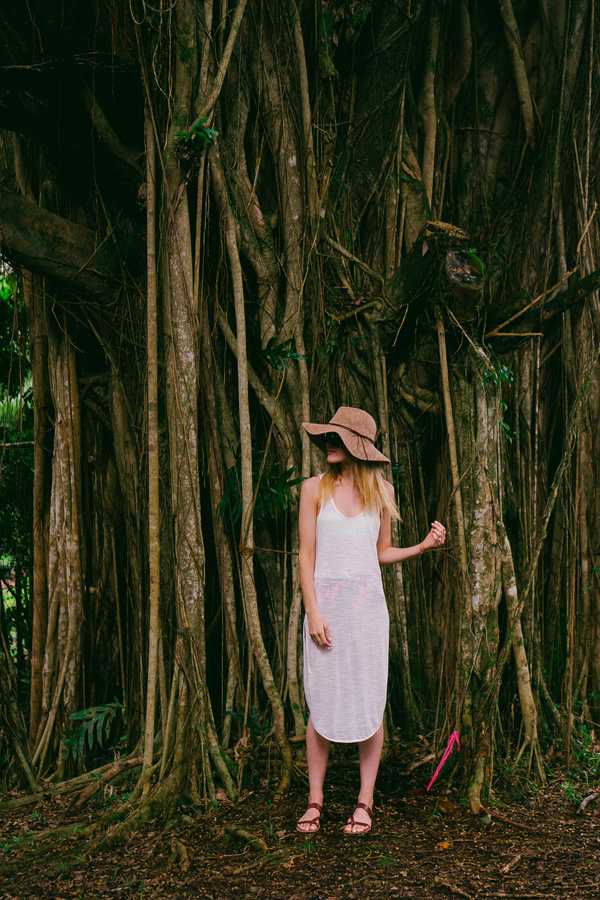 Beautiful girl taking photos near old trees Stock Photo